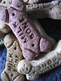 Pomysł na biznes - ciasteczka dla psów2
